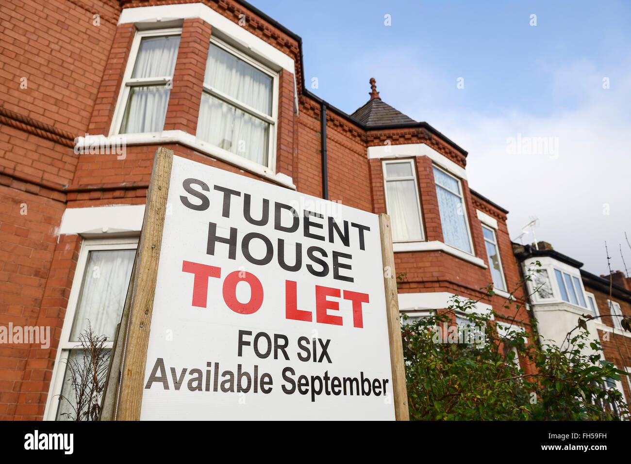 Student House To Let sign outside a house - Stock Image