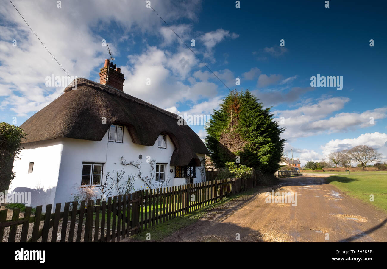 A thatched cottage in the Village of Hale in the New Forest - Stock Image