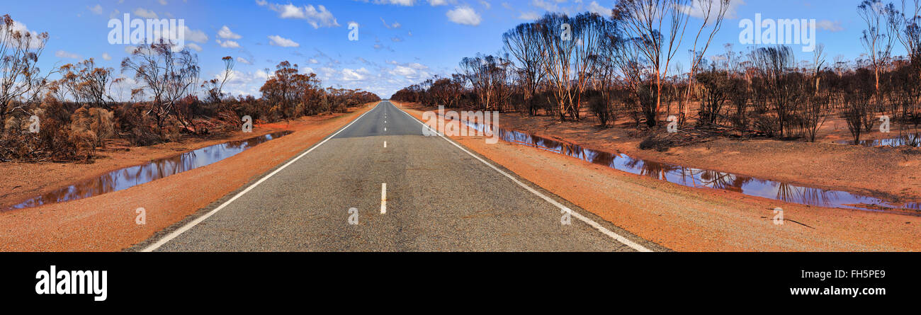 wide panorama of empty remote road across red soil outback laying after bushfire in western australia - Stock Image