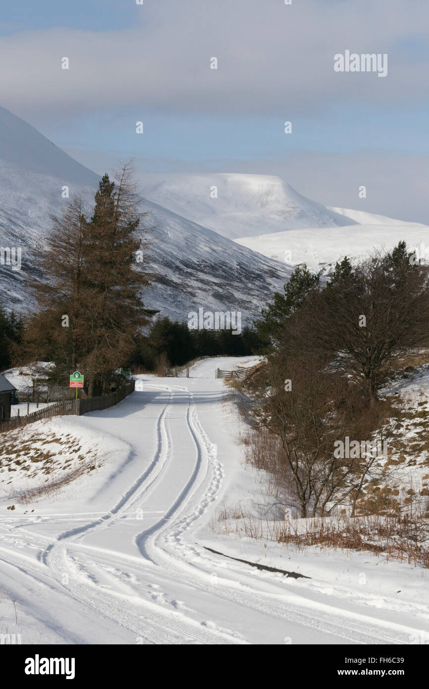 Scottish Highlands winter landscape looking north to An Torc,the Boar of Badenoch, from Dalnaspidal,Perthshire,Scotland,UK, - Stock Image