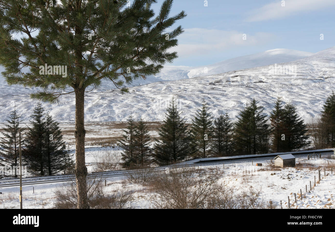 Scottish Highlands winter landscape looking west to Allt Coire Luidhearnaidh from Dalnaspidal,Perthshire,Scotland,UK, - Stock Image
