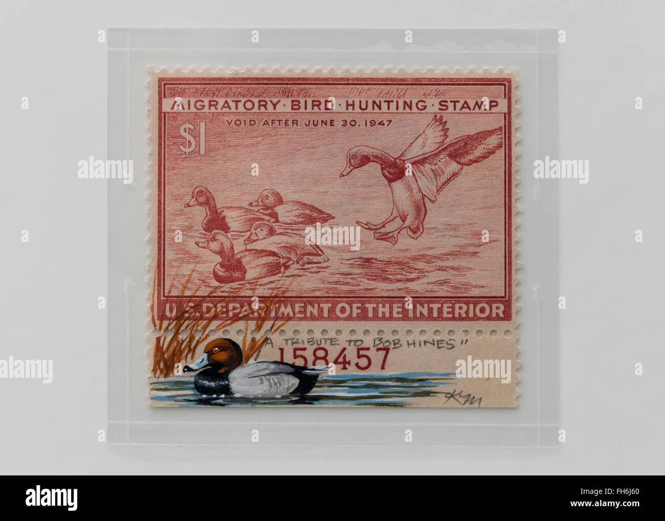 Vintage $1 Migratory Bird Hunting Stamp - USA - Stock Image