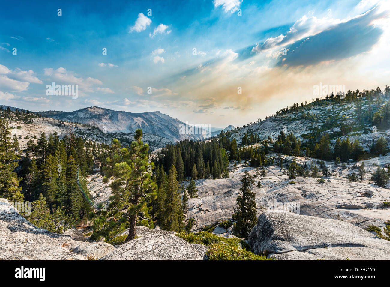 View into the High Sierra, Olmsted Point, Yosemite National Park, California, USA Stock Photo