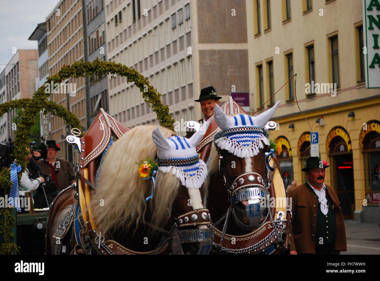 Brewery carriage on its way to brewers parade at 2015 Oktoberfest - Stock Image
