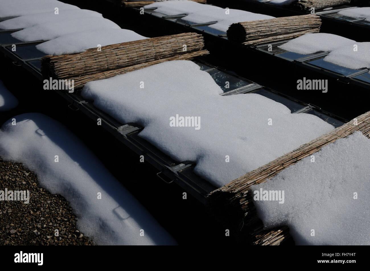 Cold frame - Stock Image