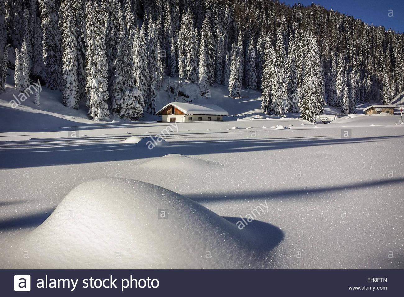 Winter in Dolomiti - Stock Image