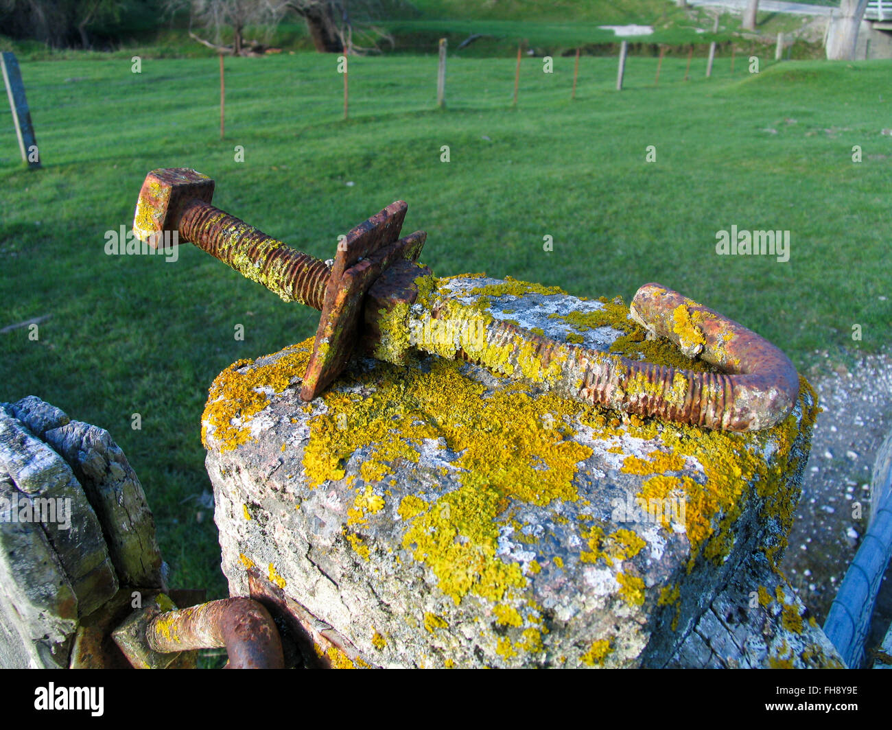A large rusty moss covered bold on a fencepost. - Stock Image