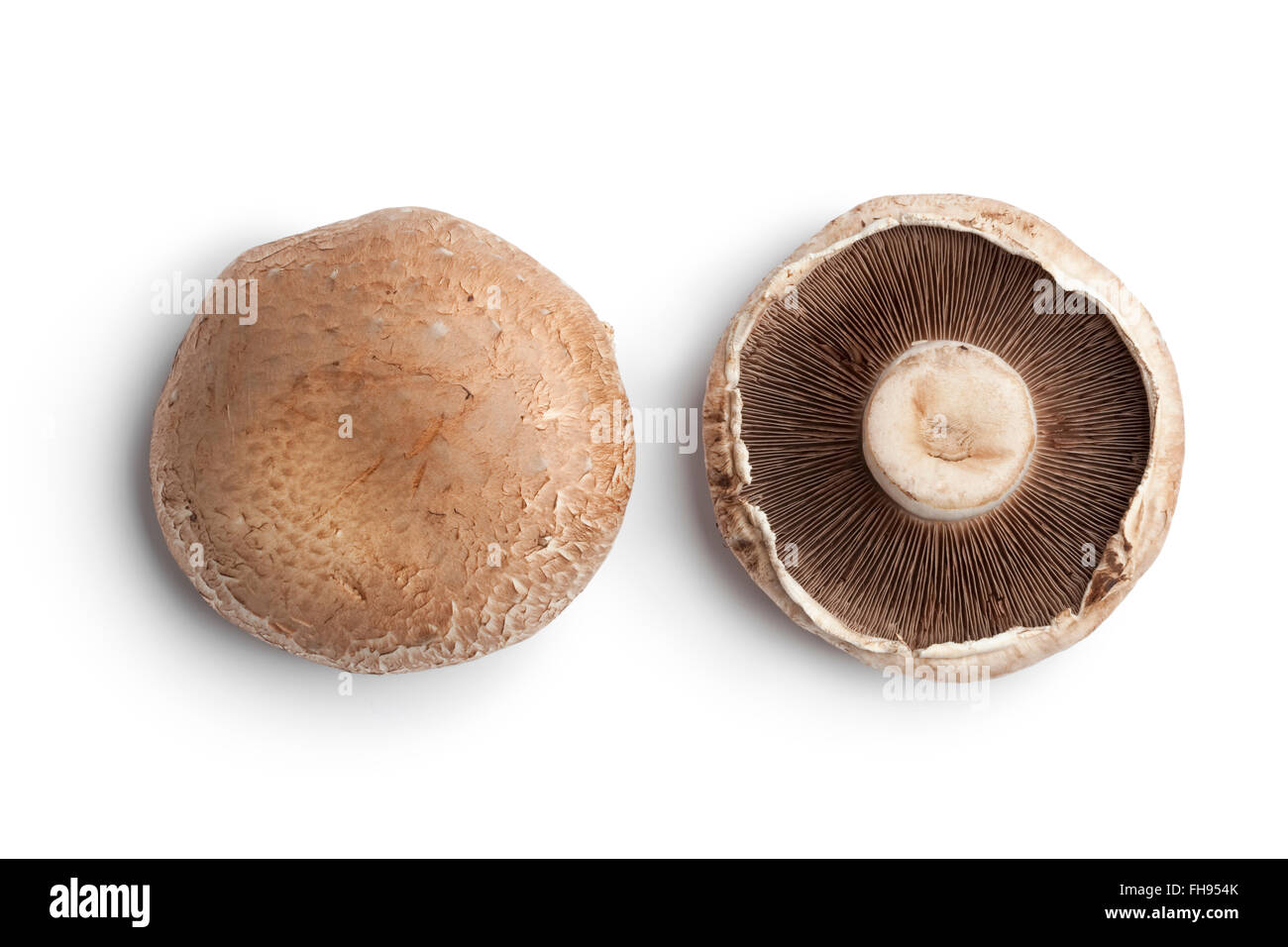 Fresh Raw Portobello Mushroom Isolated On White Background Stock Photo Alamy