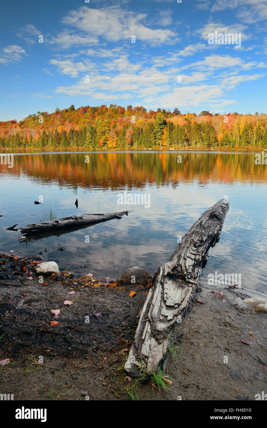 Lake with Autumn foliage, wood log at shore and mountains with reflection in New England Stowe Stock Photo