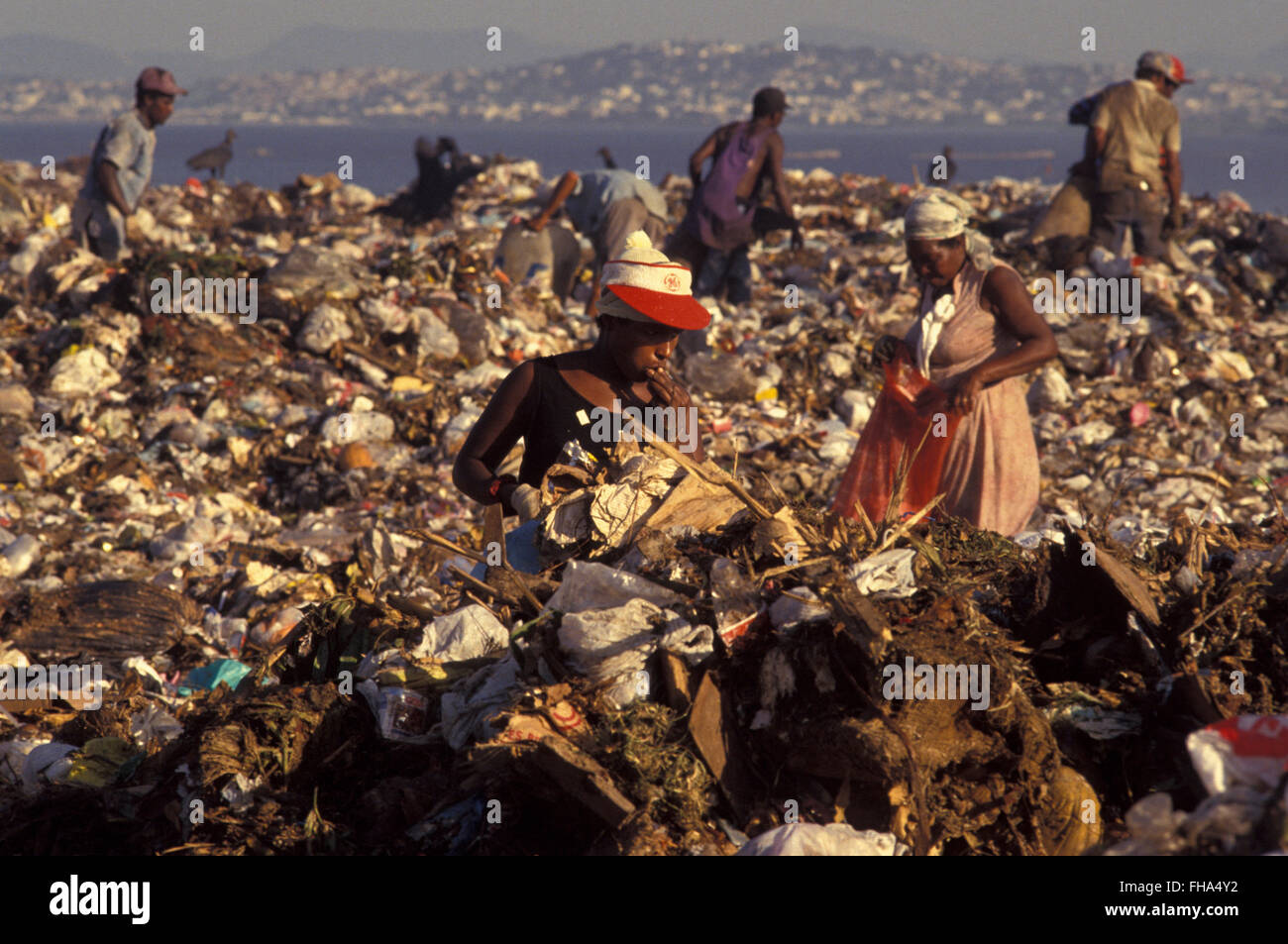 Food Garbage Dump High Resolution Stock Photography and Images - Alamy