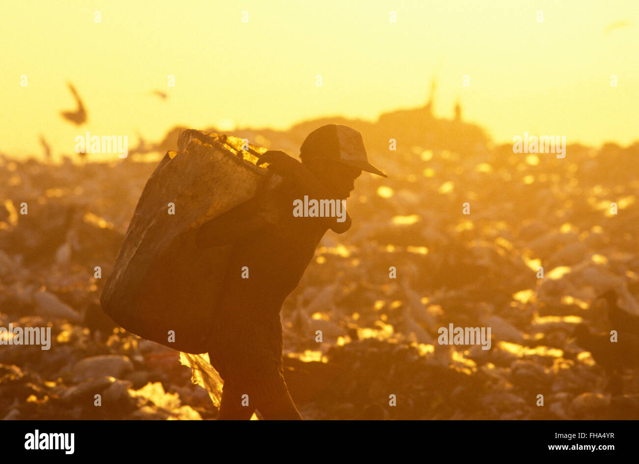 Pickers sort through garbage finding recyclables as a means of survival at Metropolitan Landfill of Jardim Gramacho - Stock Image