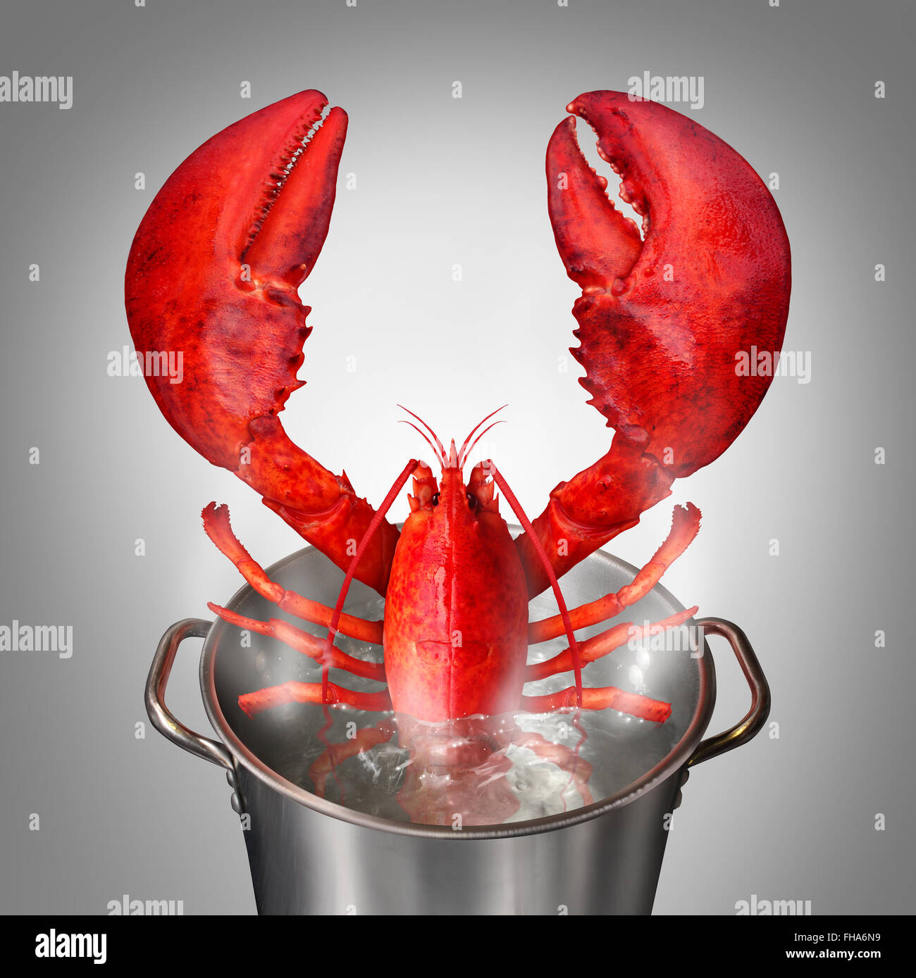 Lobster in a pot as a fresh catch of the day cooked red crustacean sticking out of a cooking kettle with boiling - Stock Image