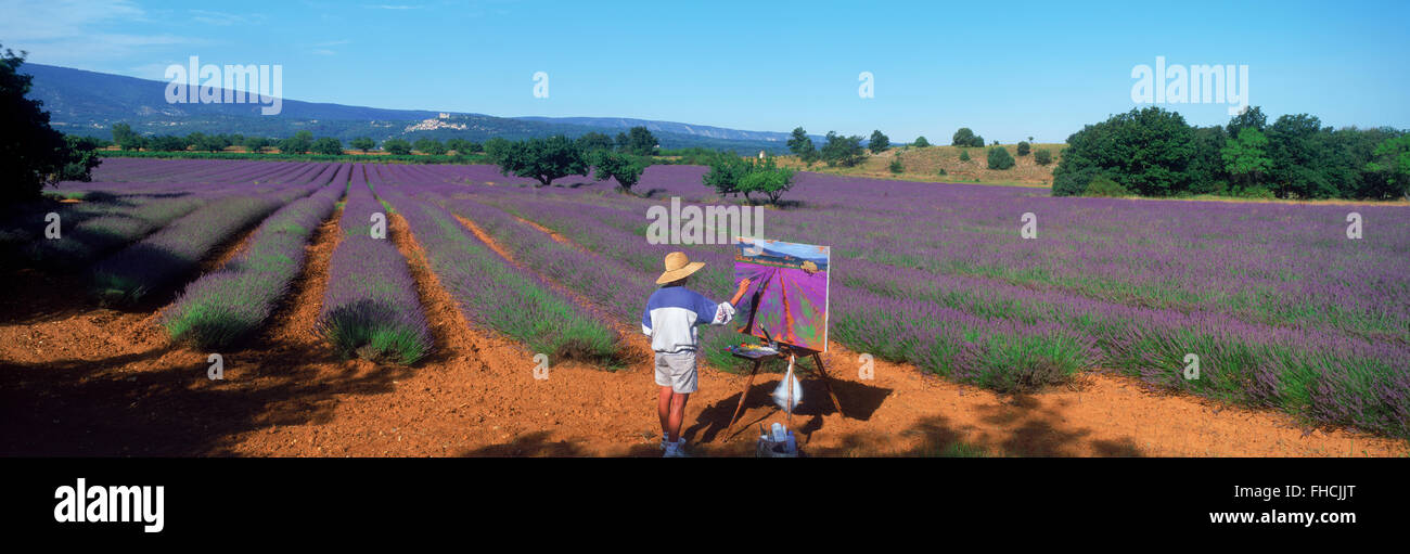 Panoramic shot of female artist painting field of lavender in Provence - Stock Image