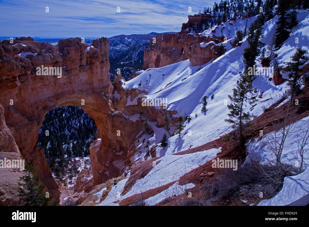 Winter scene in Bryce Canyon National Park.  Natural Bridge with snow in the foreground showing animal tracks and - Stock Image