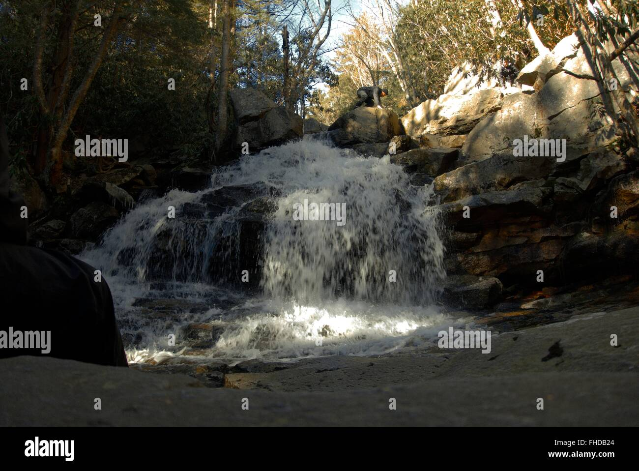 A waterfall in Dolly Sods Wilderness, Monongahela National Forest - Stock Image