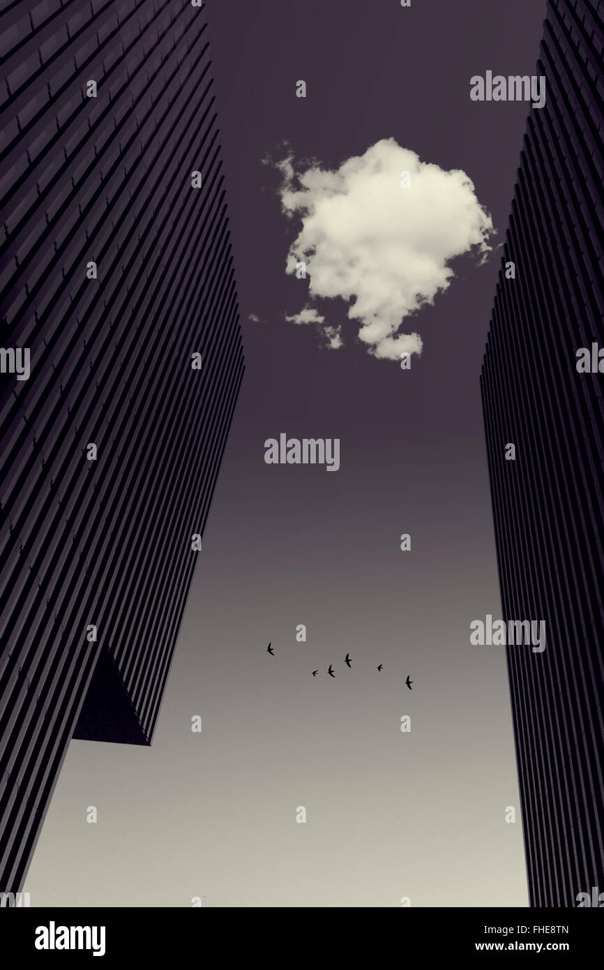 Cloud between office towers, flying birds, digitally manipulated - Stock Image