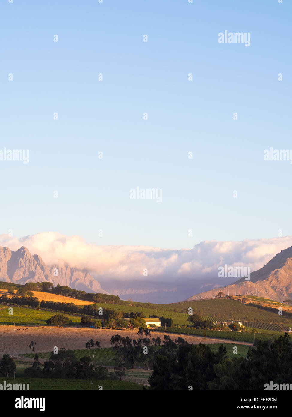 Landscape in Stellenbosch, Western Cape, South Africa, at sunset. - Stock Image