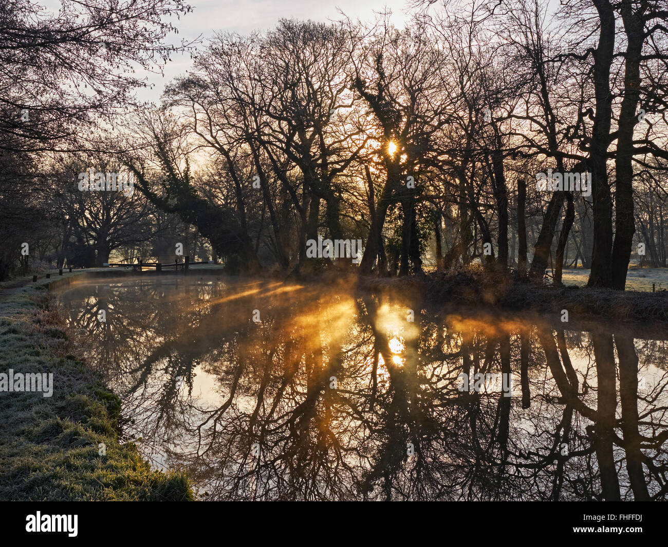 River Wey navigation at Newark lock near Ripley Surrey on a still clear frosty winters morning with contre jour - Stock Image