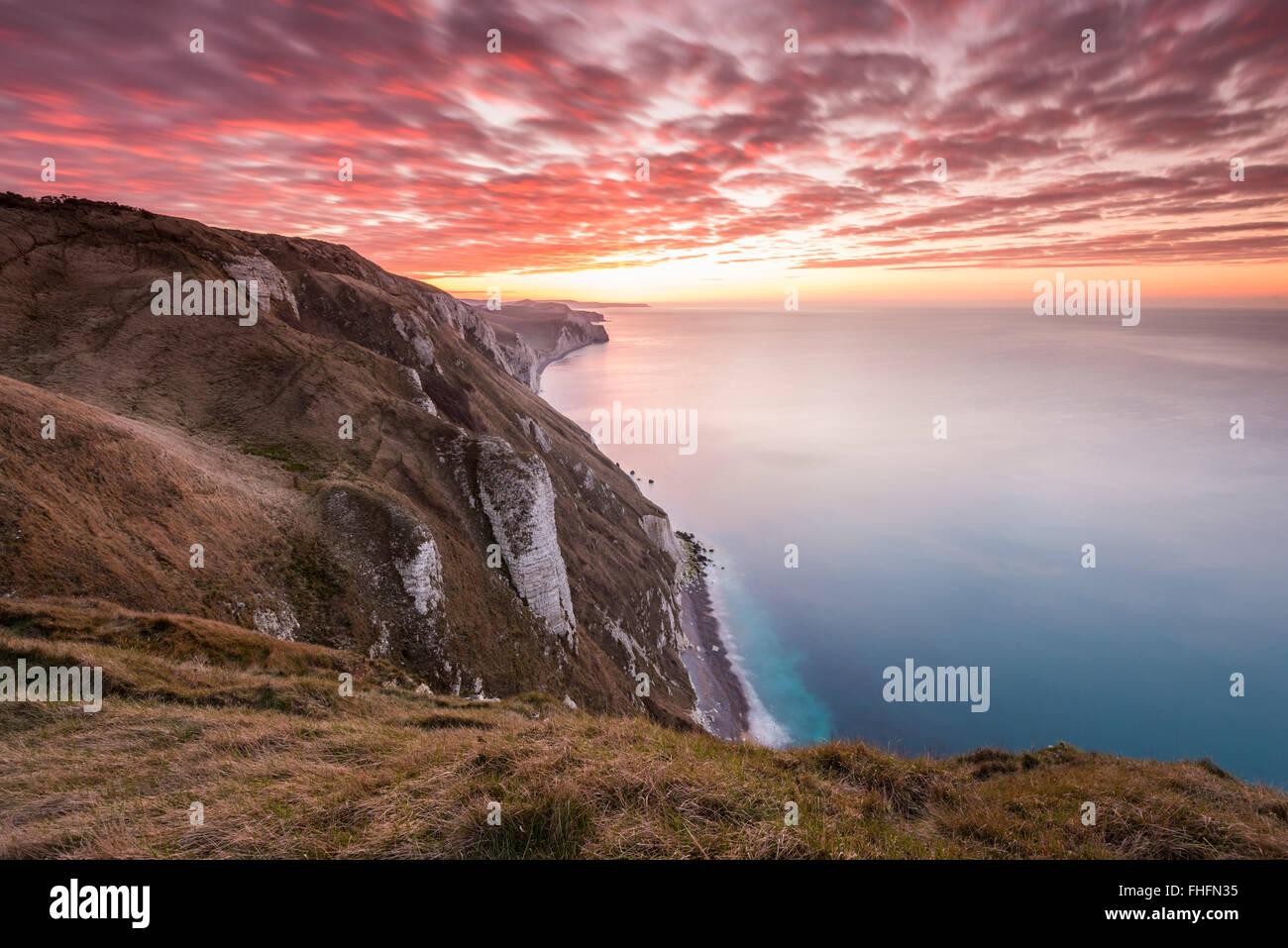 White Nothe, Dorset, UK. 25th February, 2016. UK Weather: View along Dorset's Jurassic Coast looking towards Lulworth Stock Photo
