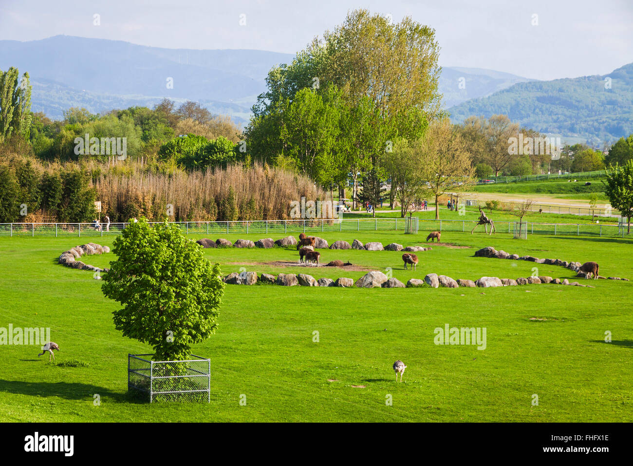 Mundenhof, the outdoor zoological garden in Freiburg im Breisgau city, Germany. The zoo is open 24/7. There is no - Stock Image