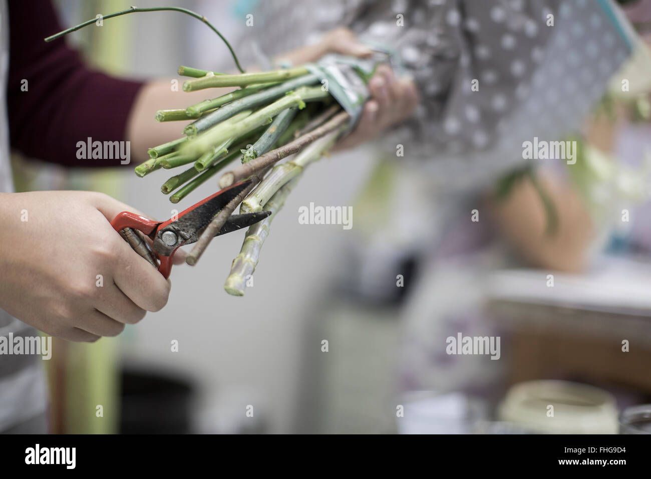 Florist cutting flower stems Stock Photo