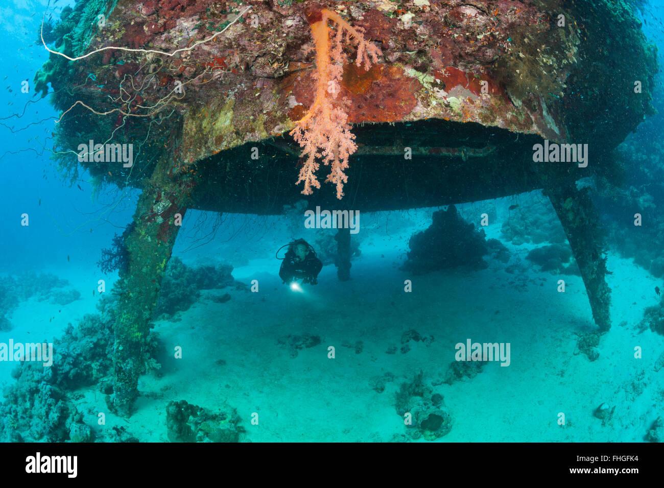 Diving Cousteaus Underwater Habitat Precontinent II, Shaab Rumi, Red Sea, Sudan - Stock Image