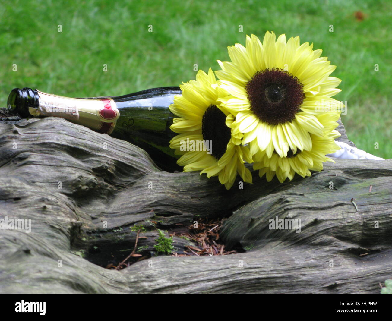 Special occasion yellow flowers and bottle of Champaign - Stock Image