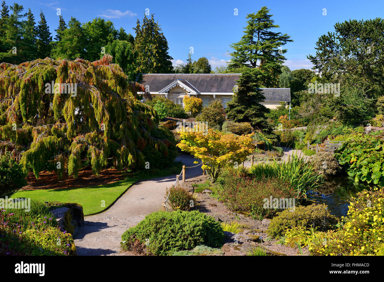 Rock garden, Royal Botanic Garden, Edinburgh, Scotland, UK Stock Photo