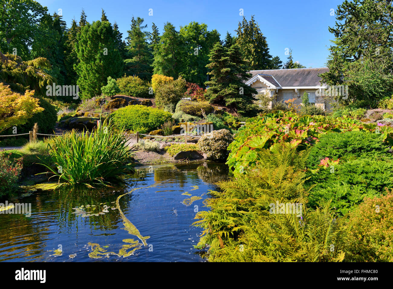 Rock garden and pond, Royal Botanic Garden, Edinburgh, Scotland, UK - Stock Image
