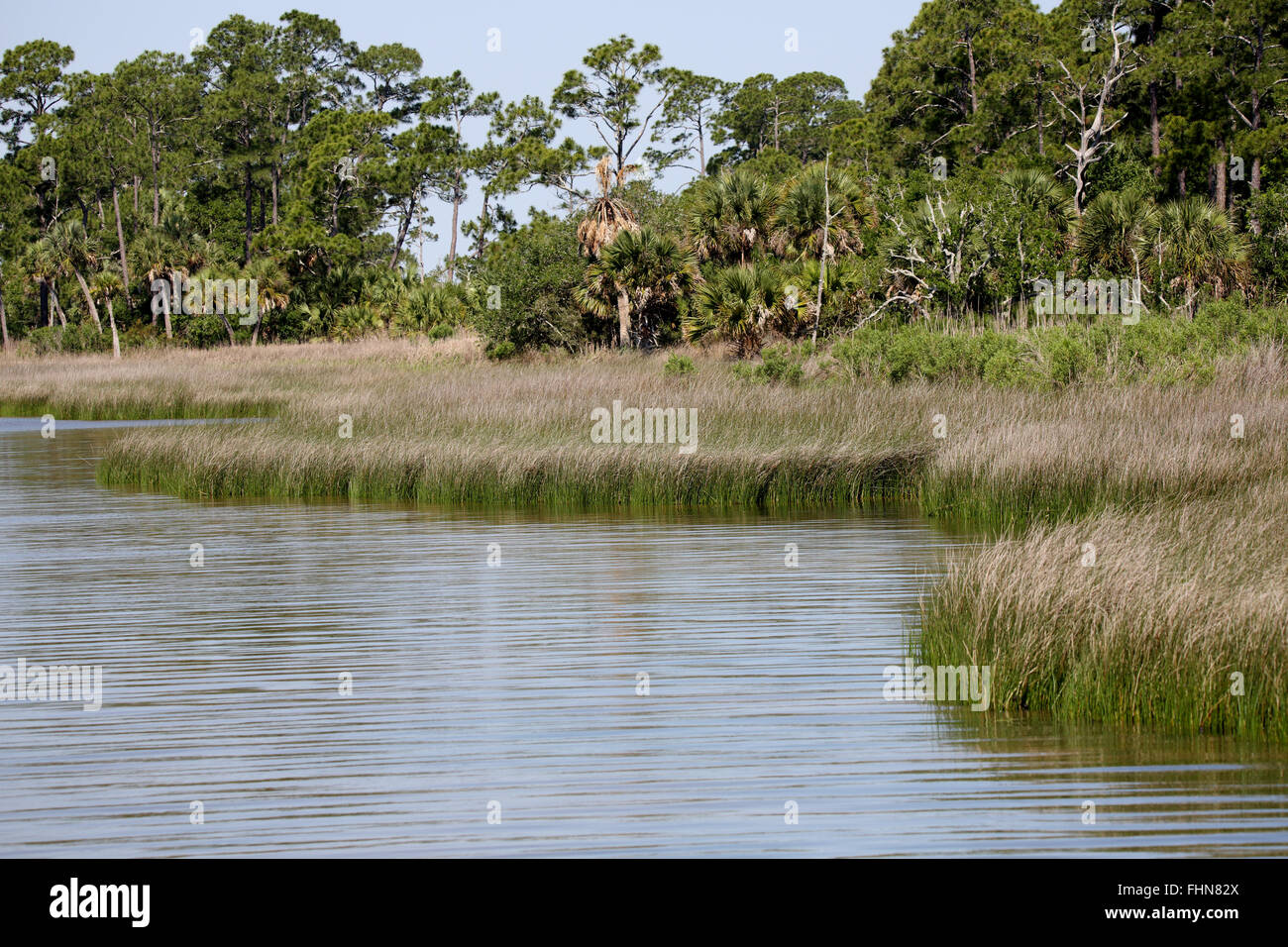 Apalachicola Bay on a still day - Stock Image