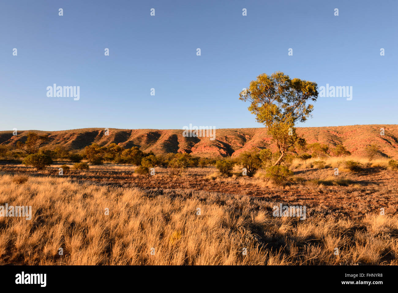 View of the West MacDonnell Ranges, Northern Territory, NT, Australia - Stock Image