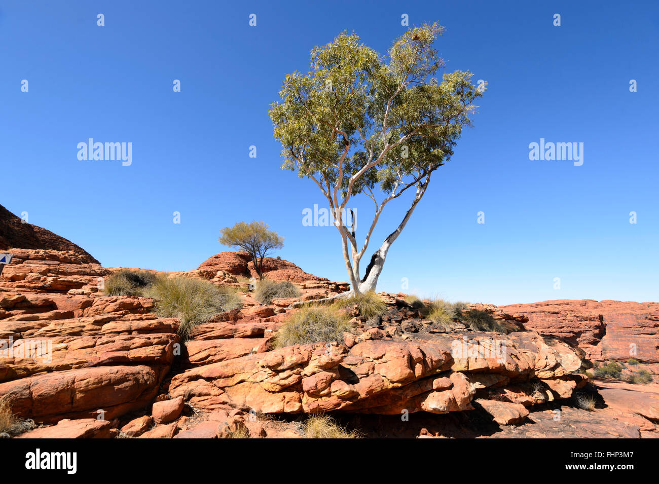 King's Canyon, Northern Territory, Australia - Stock Image
