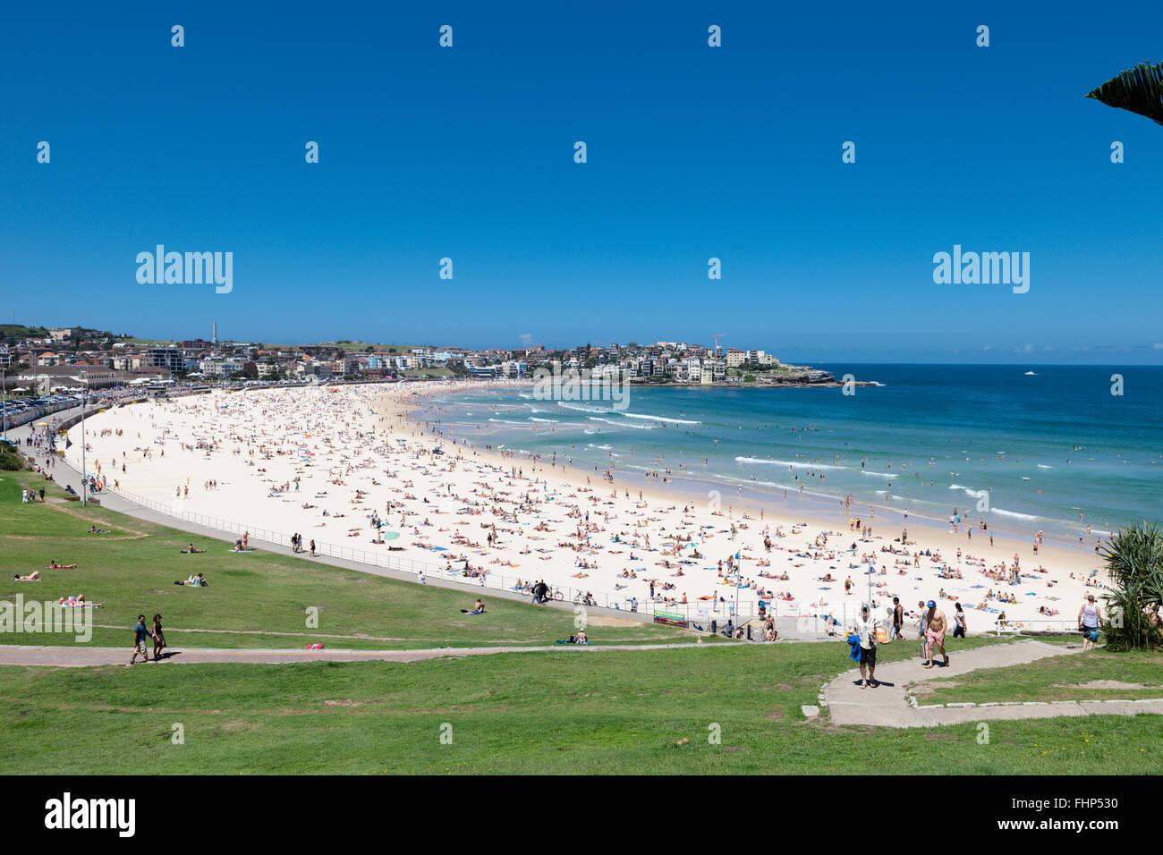 Sydney's iconic Bondi Beach, busy on a hot summer day - Stock Image