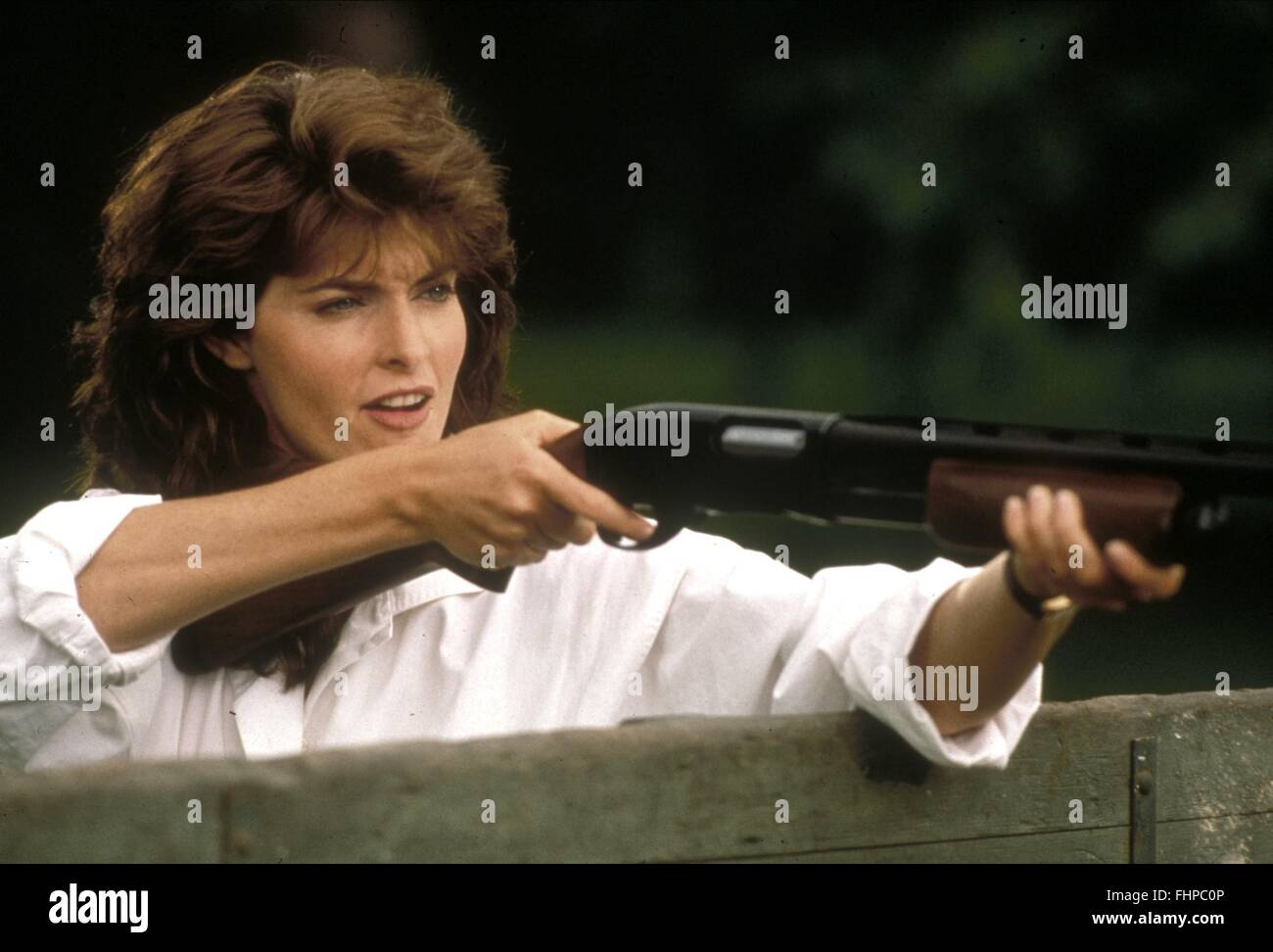 Bird On A Wire Joan Severance Center Here39s Fantastic Diagram Of What Essentially Cable Network Looks 1990 Stock Photo 96993366 Alamy Rh Com Baker Water Etched Birds Youtube