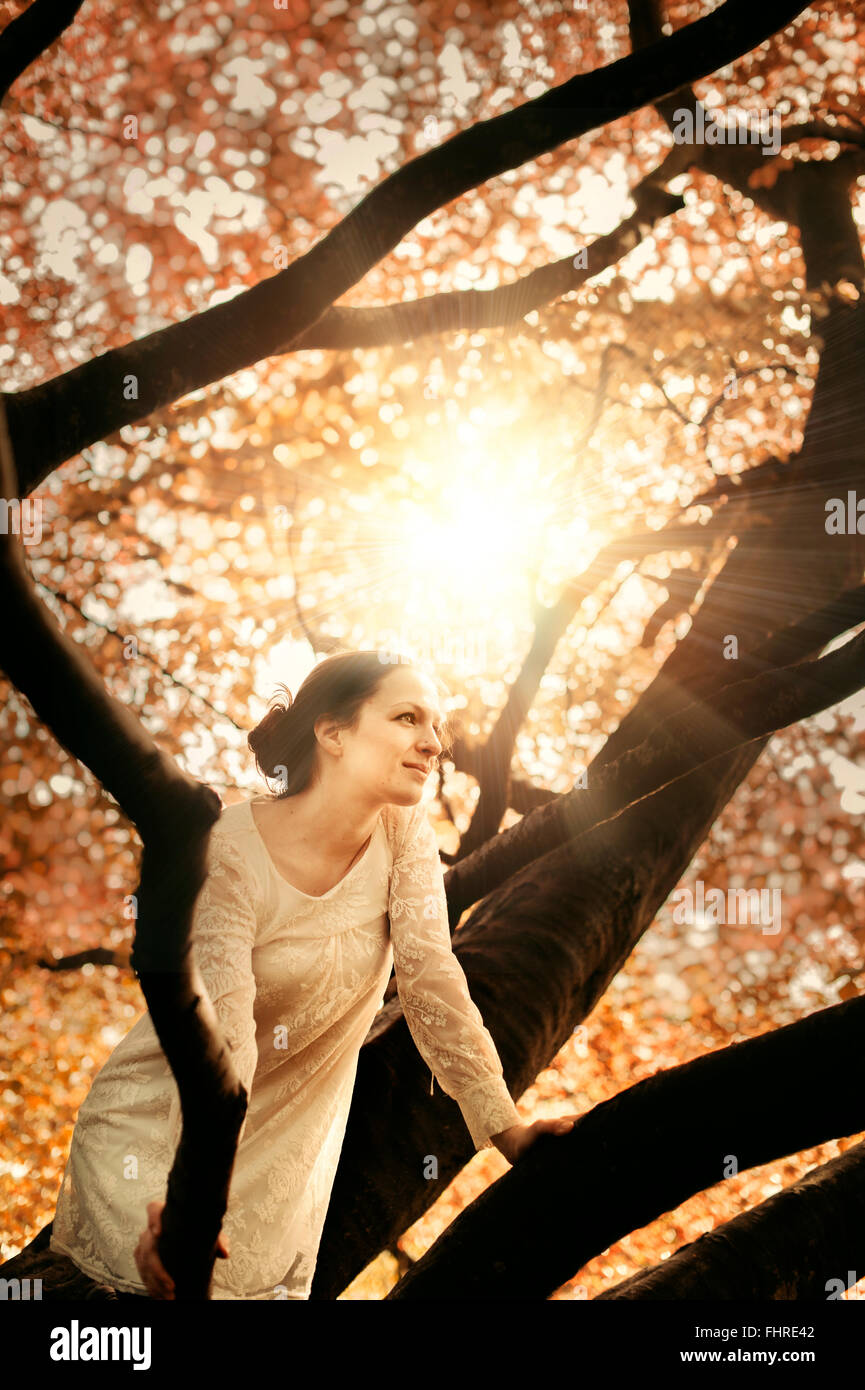 young beautiful woman sitting on tree branch - Stock Image