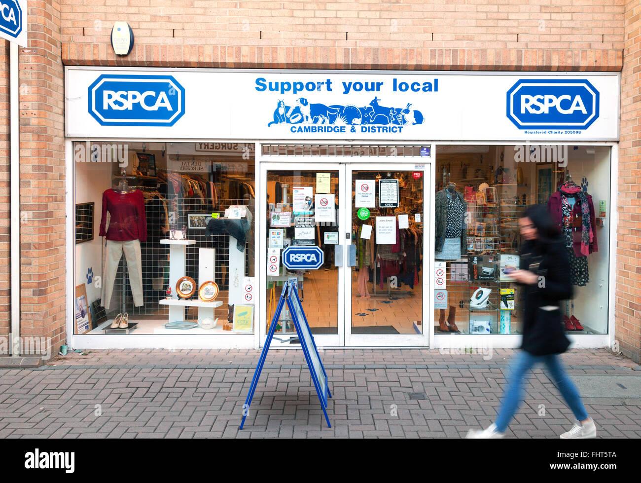 RSPCA Charity shop, Burleigh Street, Cambridge UK - Stock Image