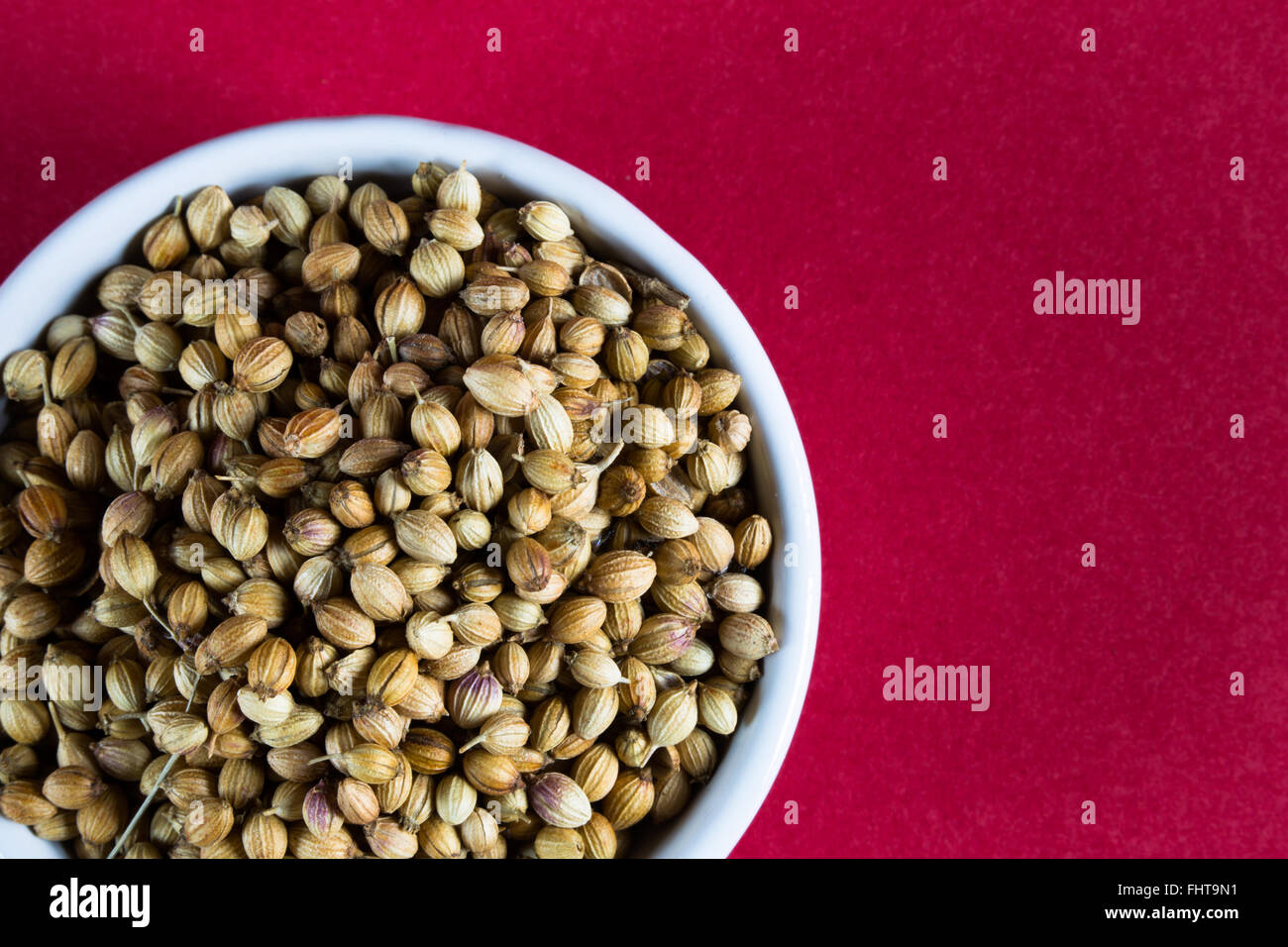 A macro image of Mediterranean culinary/herbal whole spices. Specifically Whole Coriander Seeds. - Stock Image