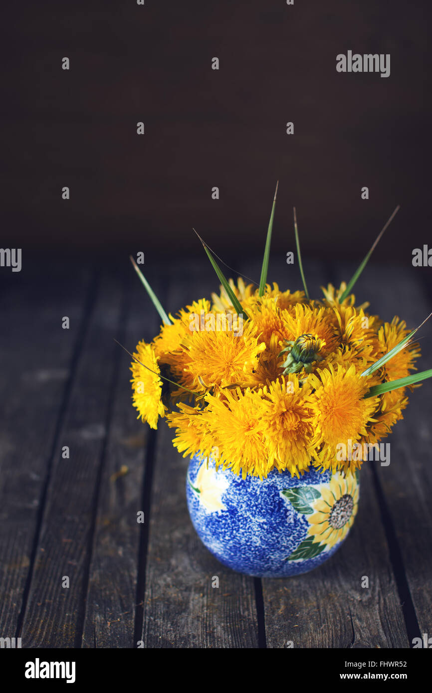 Bright natural dandelion spring bouquet on a dark wooden rustic surface in a blue vase indoors - Stock Image