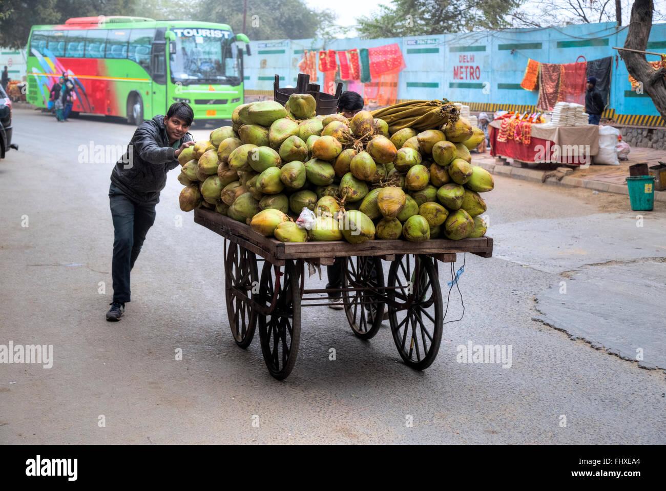 street vendor for coconuts in New Delhi, India, Asia - Stock Image