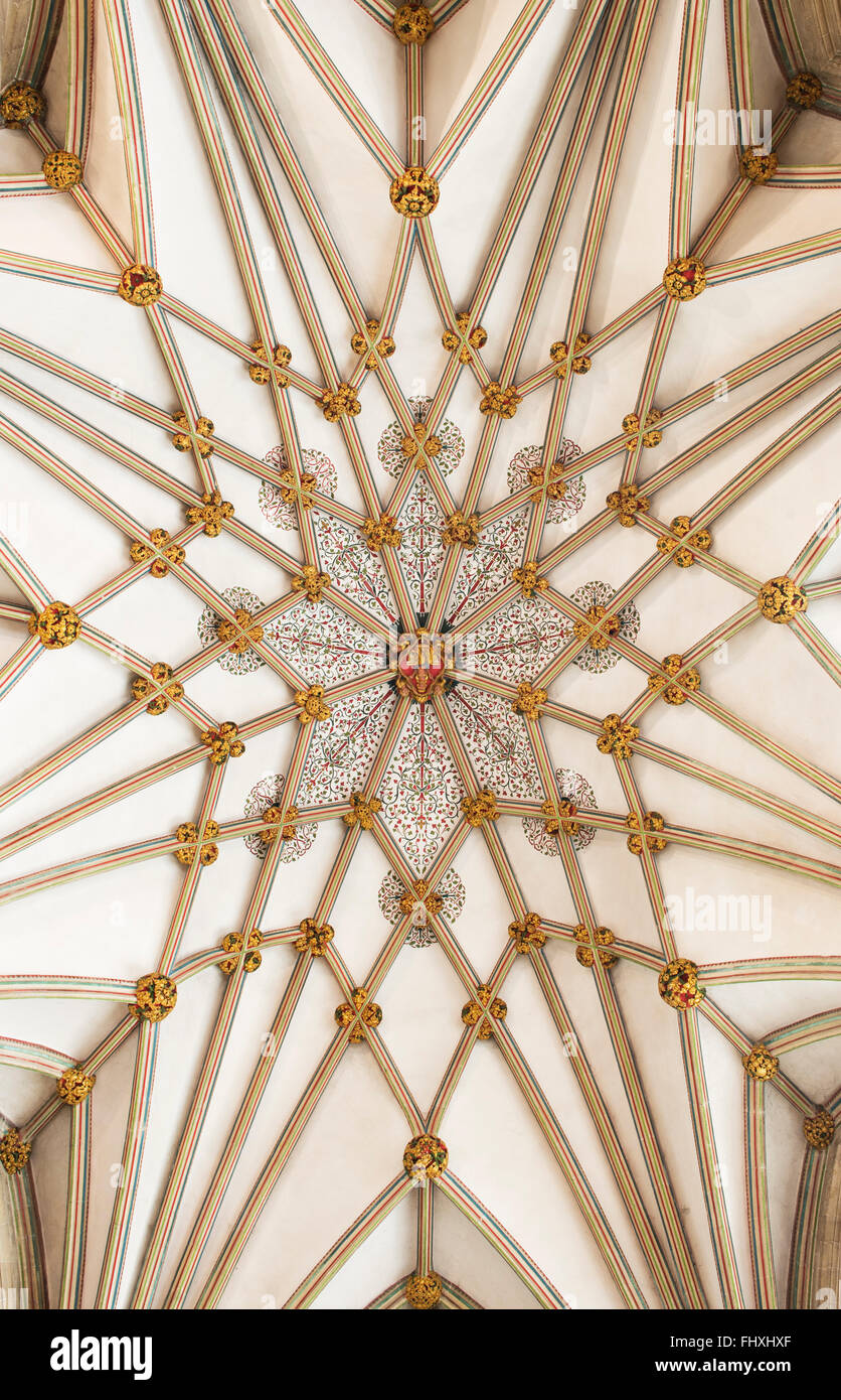 Wells Cathedral Lady Chapel stellar vault ceiling. Somerset, England - Stock Image