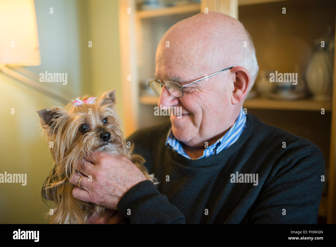 Senior man with his Yorkshire terrier at home Stock Photo