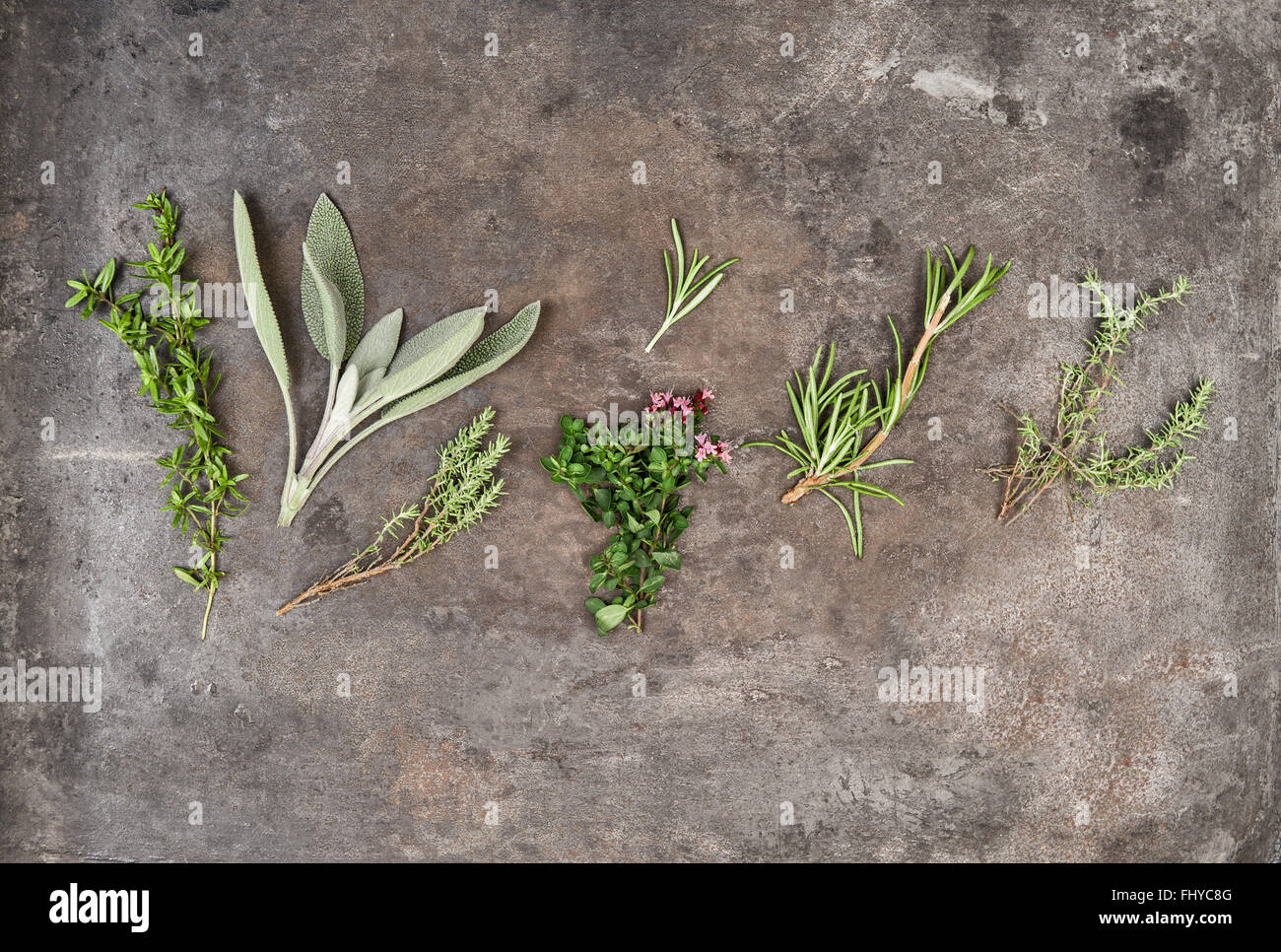 Herbs rosemary, sage, thyme, savory on rustic background - Stock Image