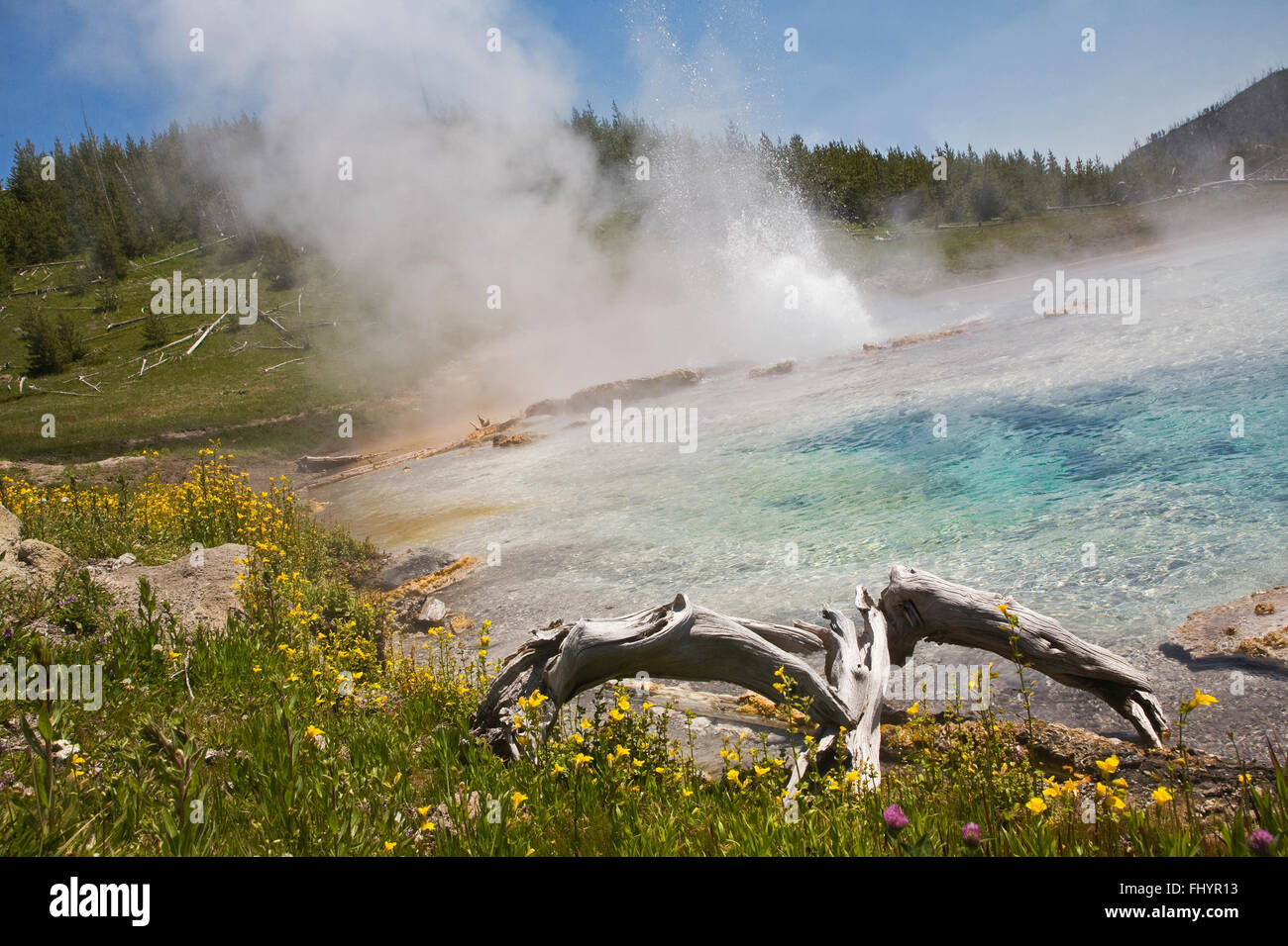 IMPERIAL GEYSER erupts into a small pool in the LOWER IMPERIAL BASIN  - YELLOWSTONE NATIONAL PARK, WYOMING - Stock Image