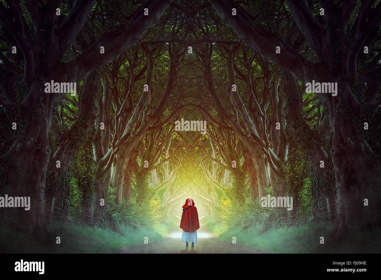 Dark Hedges forest in northern Ireland manipulation . Fantasy and surreal - Stock Image