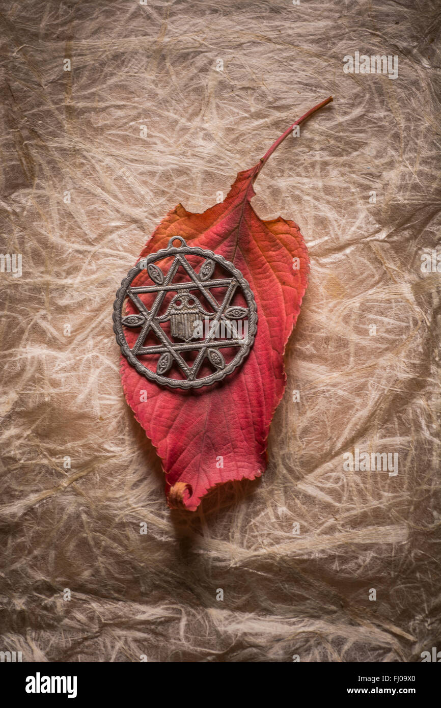 Hinduism star symbol over an autumn leaf - Stock Image