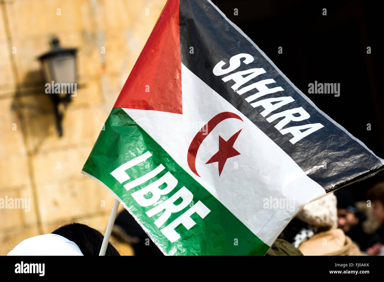 Oviedo, Spain. 27th February, 2016. Flag of Sahrawi Arab Democratic Republic during the European march in favor - Stock Image