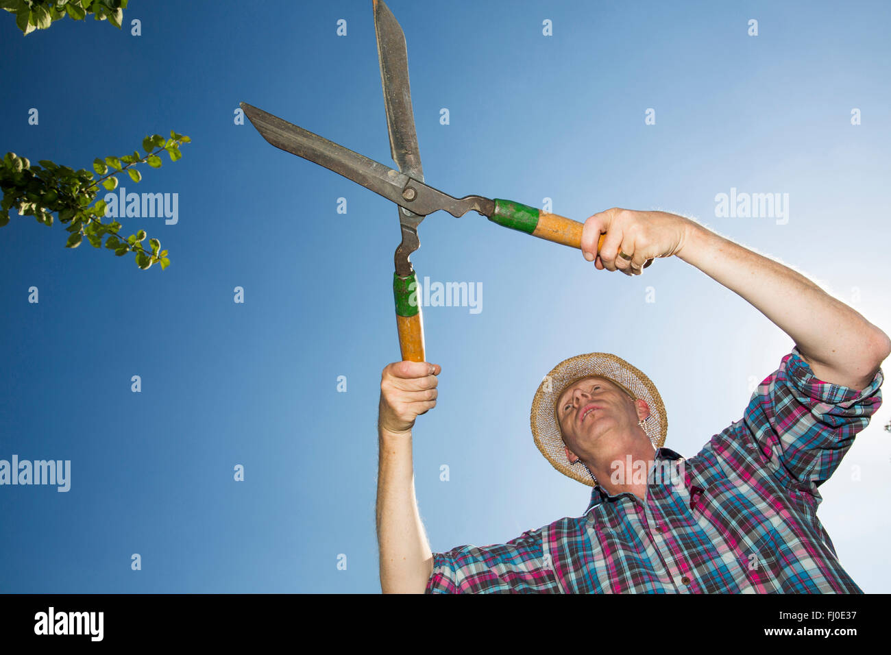 Allotment gardener with hedge trimmer in front of blue sky Stock Photo