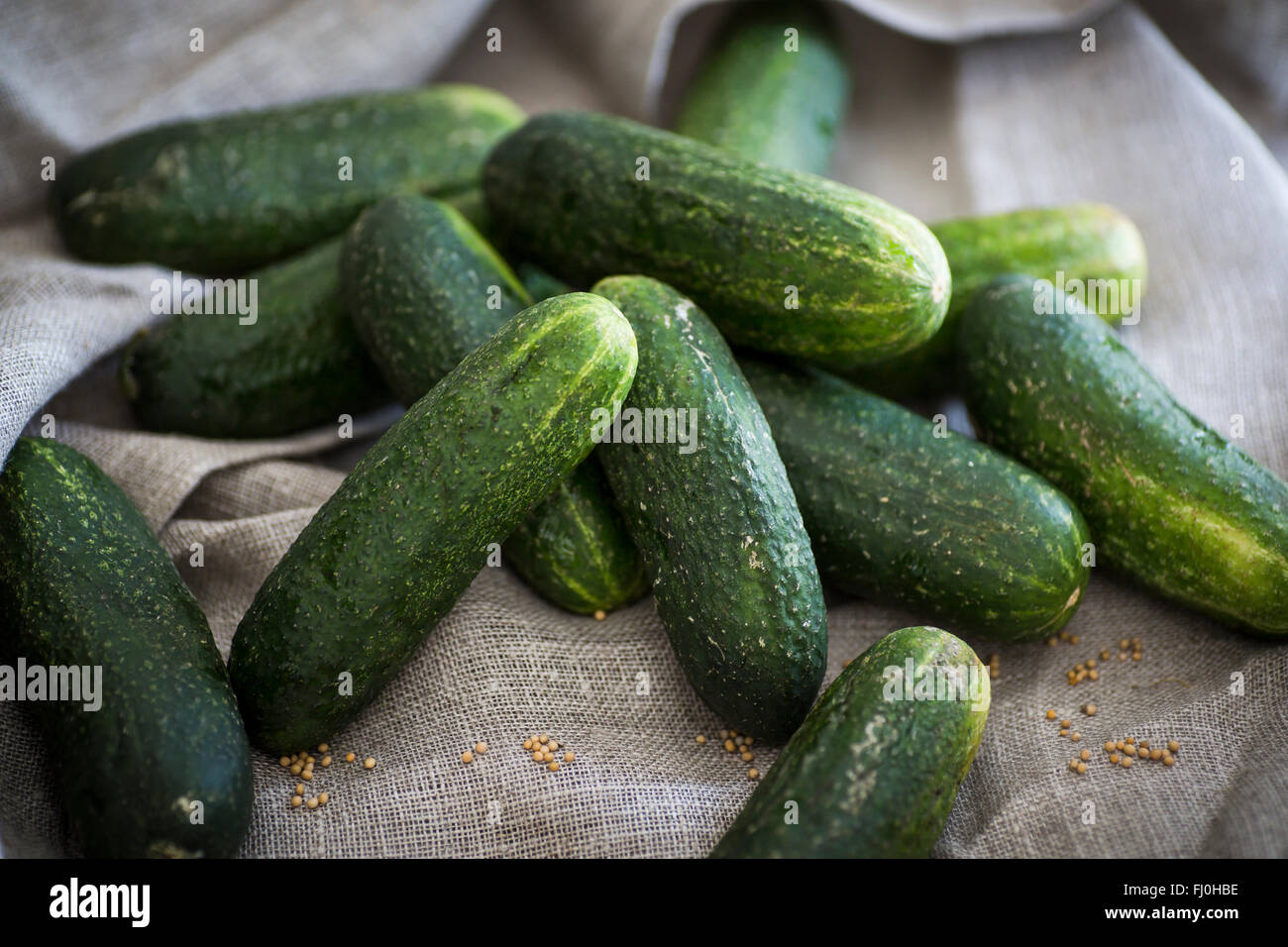 Cucumbers as an ingredient for pickles - Stock Image