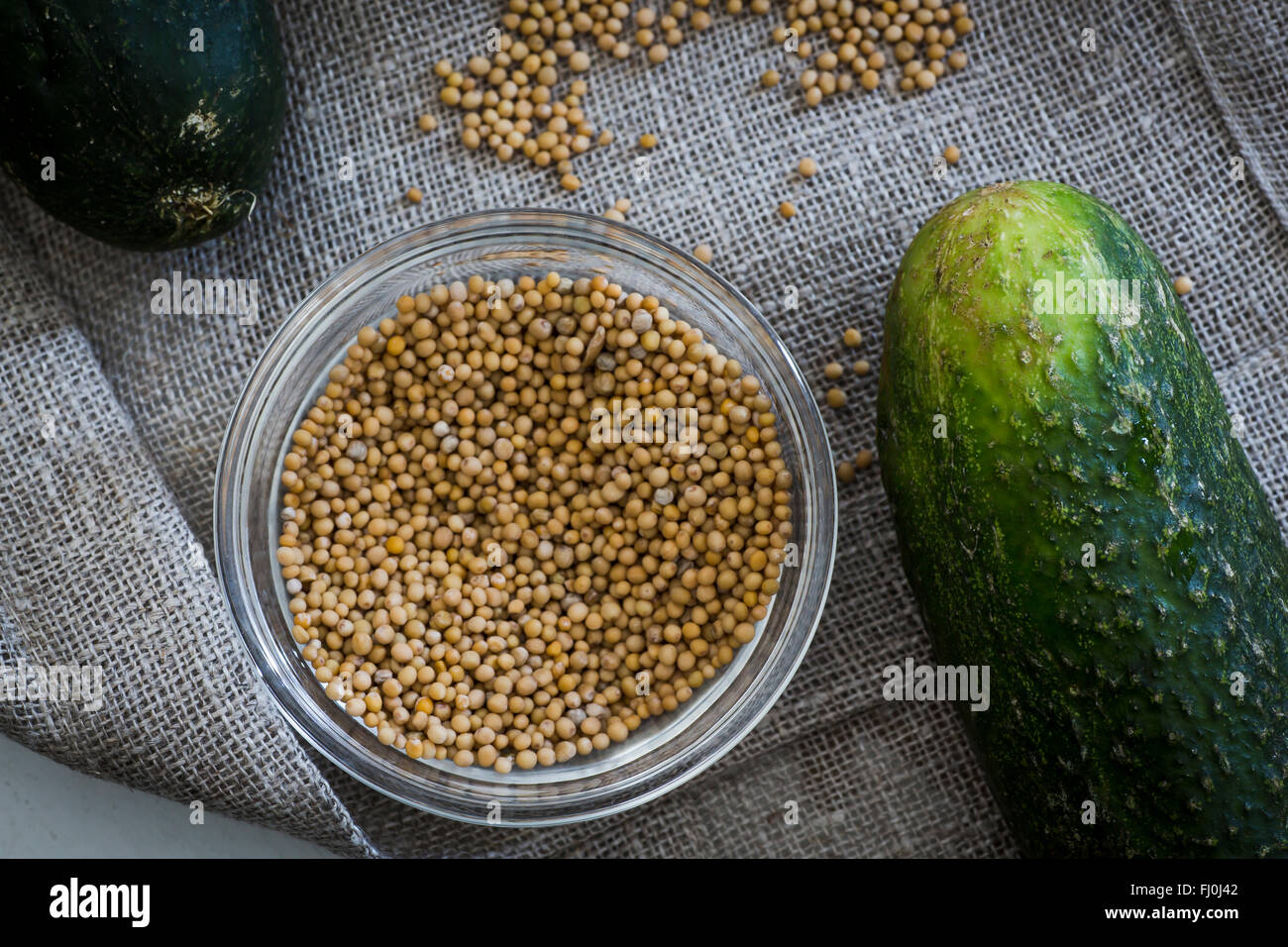 Mustard seeds and a cucumber. Ingredients for pickles - Stock Image
