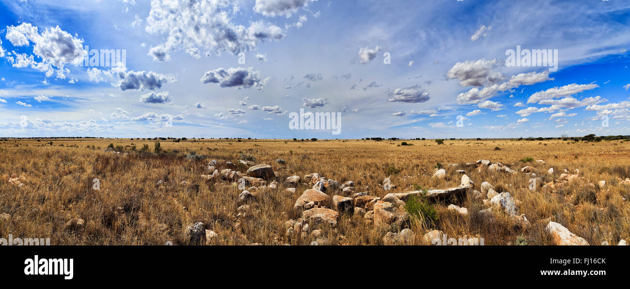 wide panoramic view of Nullarbor plain in South AUstralia. End to end flat land with no trees, only stones and bushes. - Stock Image